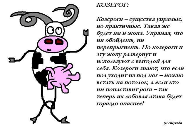 А прекрасные иллюстрации московского художника bird born помогут нам в этом.