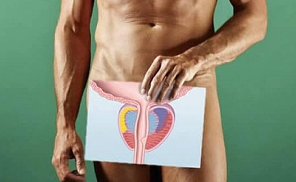 Паталогии головки пениса