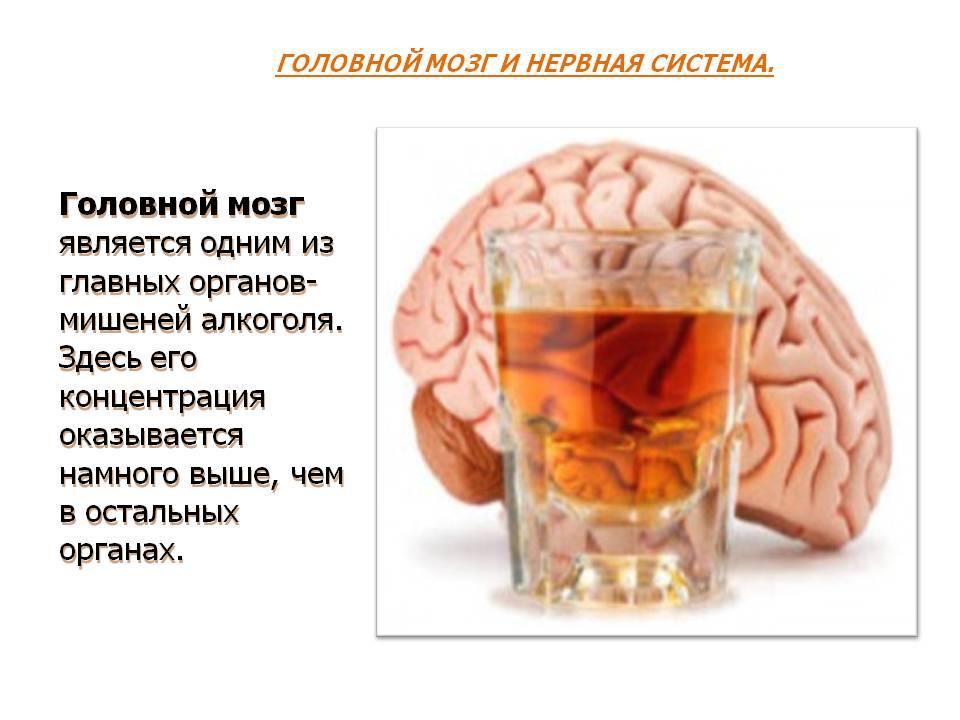 ️ Влияние алкоголя на организм человека | На развитие ...