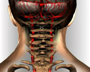 Болит шея и голова с правой стороны