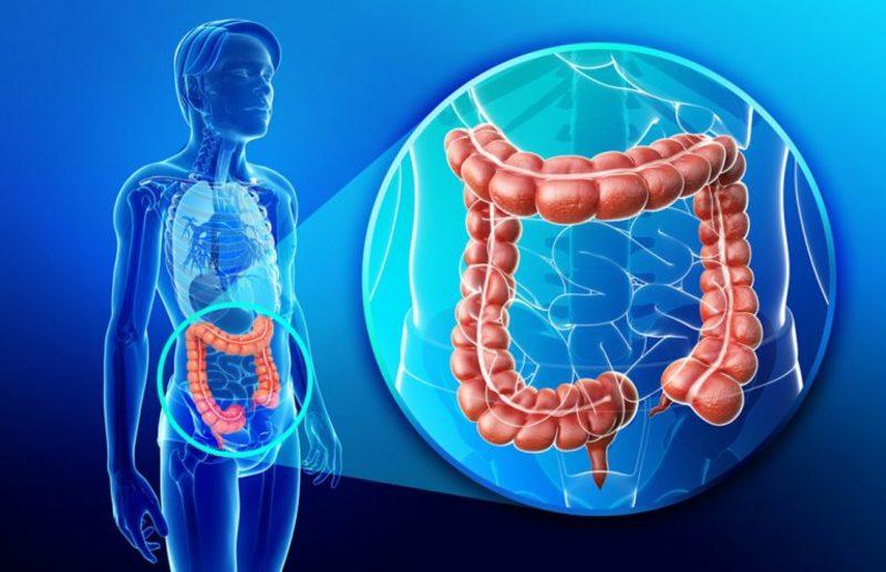 Что такое перистальтика кишечника