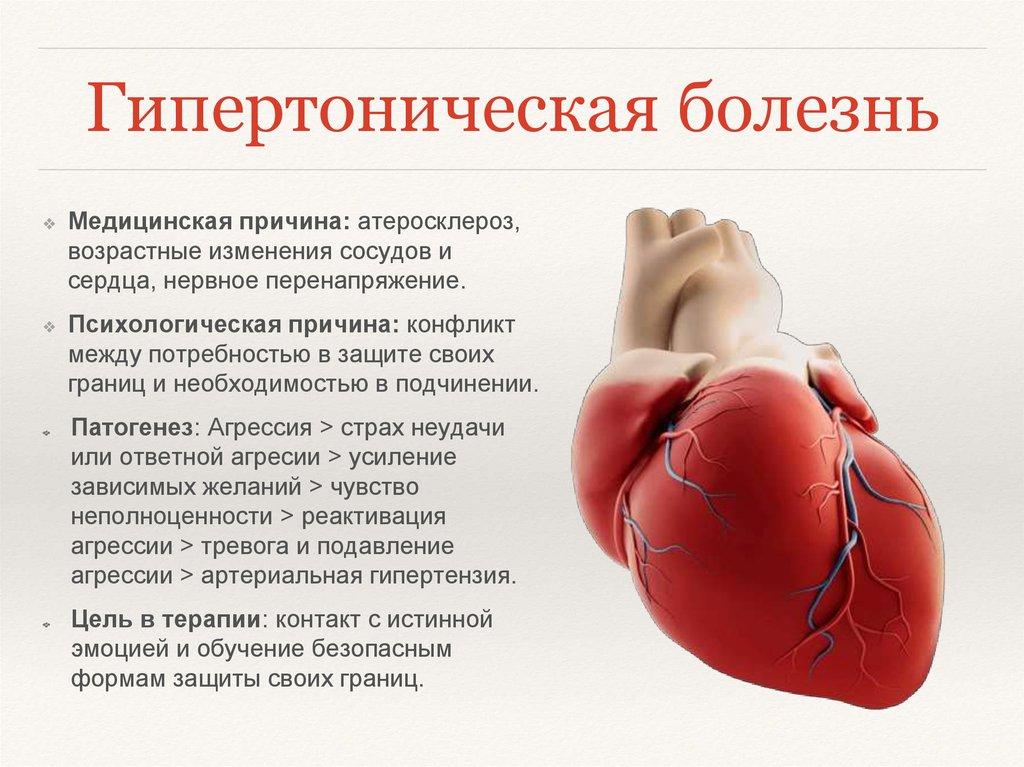 Приоритетные проблемы при гипертонической болезни